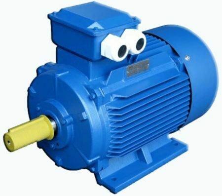 Электродвигатель лапы 1081